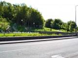 Swinford playground & Woodlands