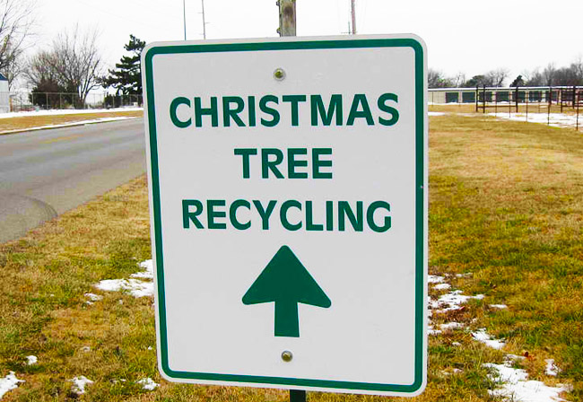 2014 Christmas Tree Recycling | Swinford Tidy Towns